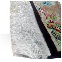 کاور نایلونی ریشه فرش